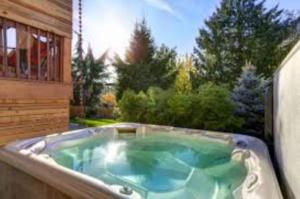 hot tub chlorine alternative